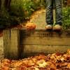 jesienna pora